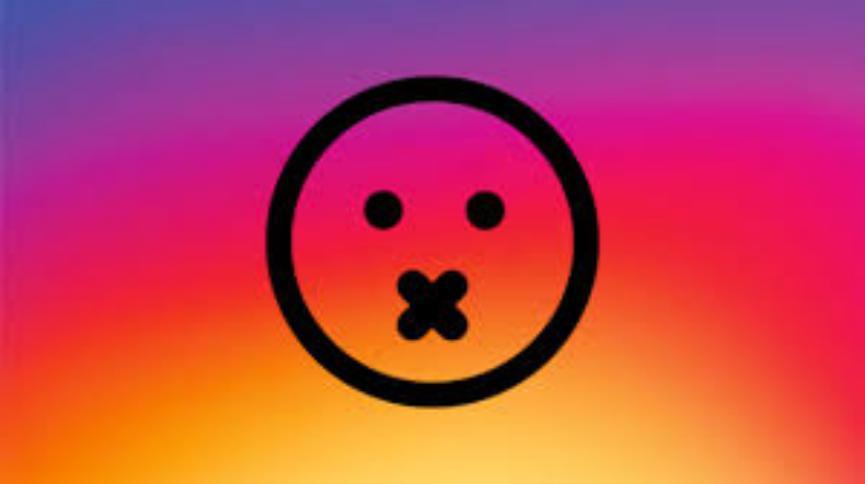 Publicaciones Silenciadas de Instagram